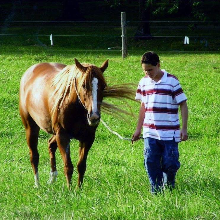 Ben w horse